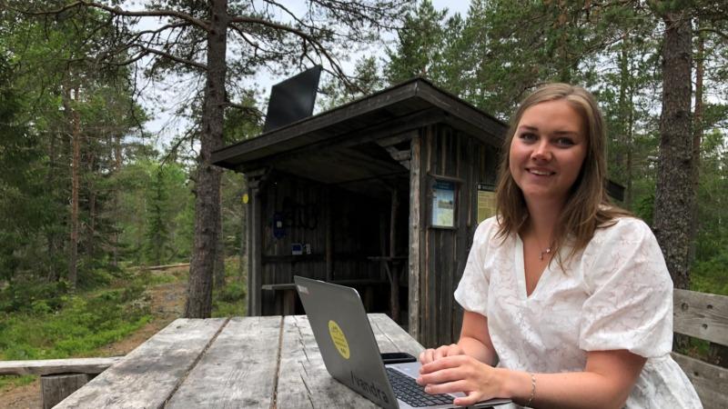 Härnösand satsar på skogs-wifi